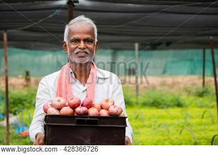 Happy Smiling Indian Farmer Holding Onions In Tray At Greenhouse Or Polyhouse - Cocept Of Good Crop