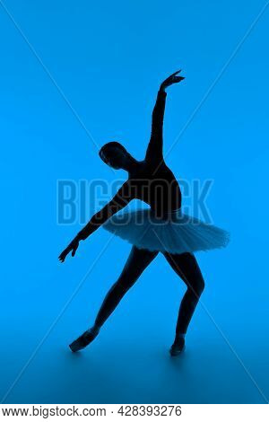 Beautiful Silhouette Of Ballerina On Blue Background Dancing Ballet. Woman Performs Smooth Movements