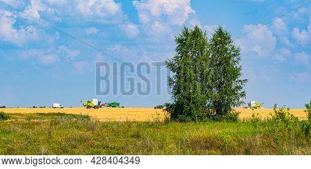 Voronezh oblast, Russia - July, 17, 2021: harvest in Voronezh oblast, Russia