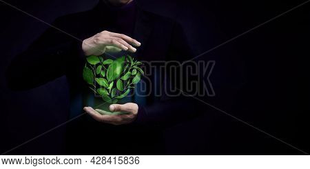 Esg Concept. Green Leaf As Heart Shape Protected By Gentle Gesture. Green Energy, Renewable And Sust