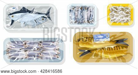 Cartoon Set Of Tuna, Herring, Oyster, Sprat And Mackerel Fishes Packed In Plastic Trays. Vector Seaf