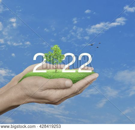 2022 White Text With Growing Tree On Green Grass Field In Hands Over Blue Sky, White Clouds And Bird