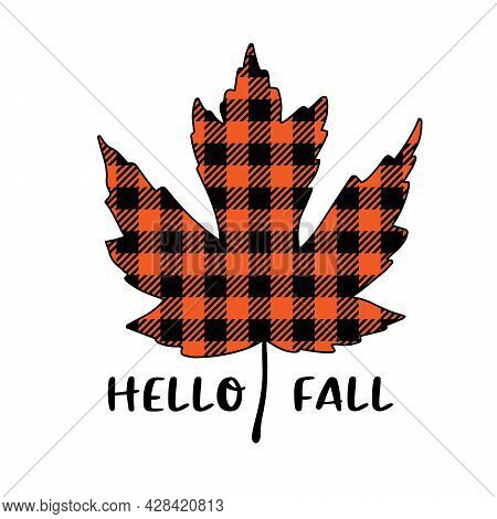 Vector Autumn Quote Hello Fall With Buffalo Plaid Maple Leaf Isolated On White Background. Season Ty