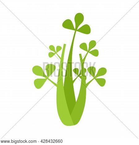 Celery Leaves Icon. Flat Illustration Of Celery Leaves Vector Icon Isolated On White Background