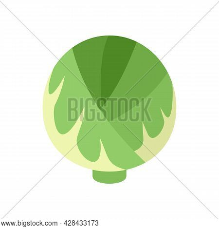 Cabbage Plant Icon. Flat Illustration Of Cabbage Plant Vector Icon Isolated On White Background
