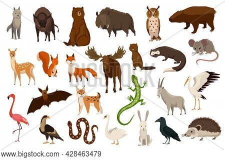 Animals of europe. Nature fauna collection. Geographical local fauna. Mammals living on continent.  illustration in kids style