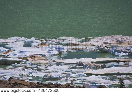 The Ices Floating On The Cavell Pond.   Jasper Ab Canada