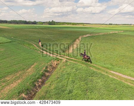 Two Horse Riders On A Light Brown And A Dark Bay Horse Moving Across The Farm Field. Riders On Horse