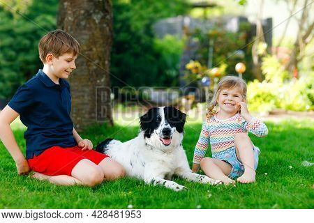 School Kid Boy And Little Toddler Girl Playing With Family Dog In Garden. Two Children, Adorable Sib