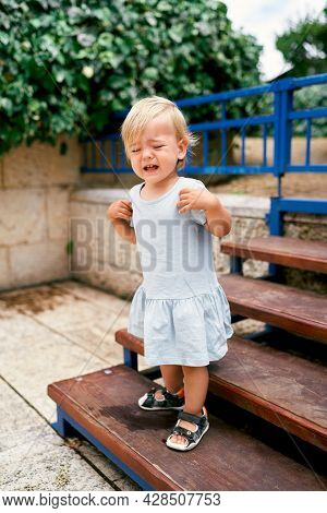 Little Crying Girl Stands On The Stairs In The Park
