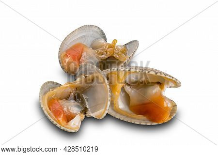 Uncooked Opened Clams, Baby Clams, Carpet Clams, Short Neck Clams On White Background With Clipping