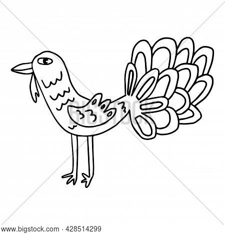 Cartoon Rooster, Turkey. Bird In Doodle Style Isolated On White Background. Farm Animal.