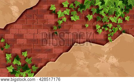 Red Brick Wall Background, Old Stone Texture, Green Ivy Leaf, Dirty Plaster, Creeper Plant Branch. A