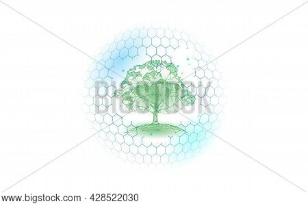 Save Forest Ecology Abstract Banner Template. Eco Rainforest Safety Environment Care Green Trees On