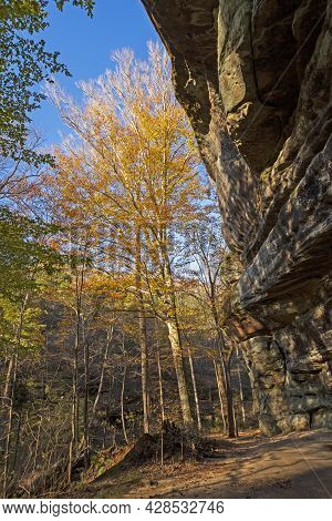 Fall Colors Peeking Out From A Dramatic Overhang On The Rim Rock National Recreational Trail In Illi