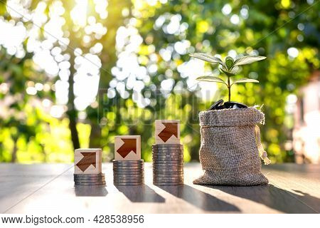 Tree Growth On The Money Bag To Save Money And Growth Symbol On Woodblock Money And Economy Growth C