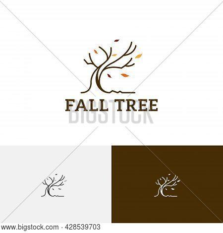 Fallen Leaves Tree Autumn Fall Season Nature Logo