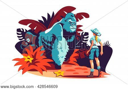 Woman Has Encounter With Gorilla Family In Jungle Vector Illustration. Traveller Meeting Gorilla In