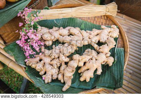 Fresh Of Organic Ginger In The Market. Fresh Ginger Plant Farm. A Lot Of Ginger Root. Fresh Vegetabl