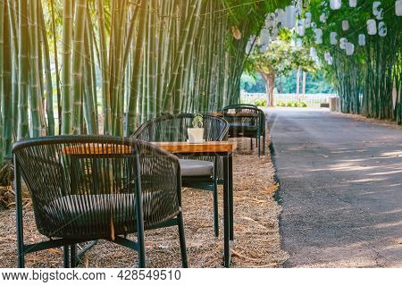 Ornamental Plants In Small Vase On Tables To Sit And Relax Beside The Path In Natural Green Bamboo G