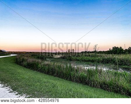 Wooden Boardwalk Bridge In The Swamp