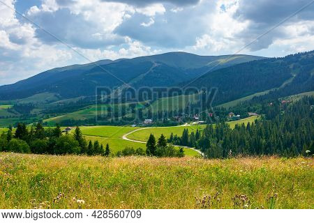 Mountain Landscape With Meadow And Valley. Beautiful Countryside Scenery In Summer. Coniferous Fores
