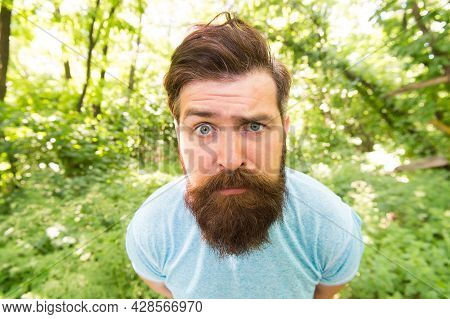 Unhappy Brutal Man. Unhappy Bearded Man Closeup Portrait. Mature Hipster With Beard In Forest.