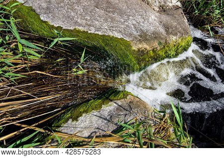 Natural Landscape Mountain River Flowing Stream Among Boulders Overgrown With Algae And Reeds On A S