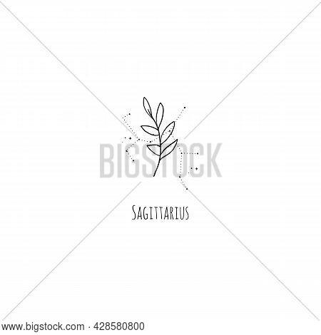 Hand Drawing Sagittarius Constellation Symbol With Floral Branch And Stars. Modern Minimalist Mystic