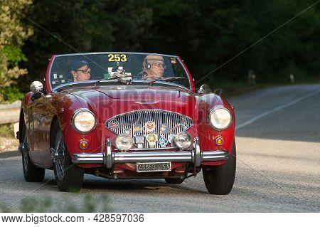 Sant'anatolia Di Narco, Umbria,  Italy, 1955 Austin Healey 100 Bn1 Attends The Mille Miglia Historic