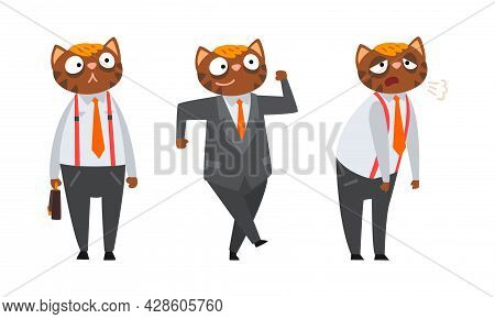 Cat Businessman Character In Formal Suit And Tie Standing, Walking And Feeling Tired Vector Set