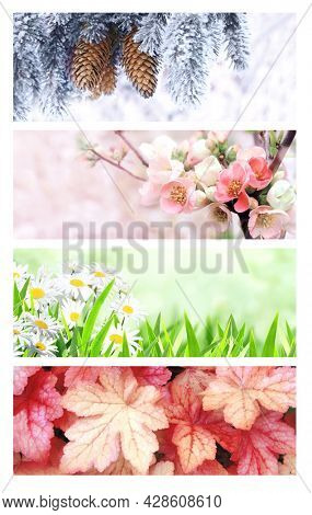 Four seasons of year. Set of horizontal nature banners with winter, spring, summer and autumn scenes. Copy space for text