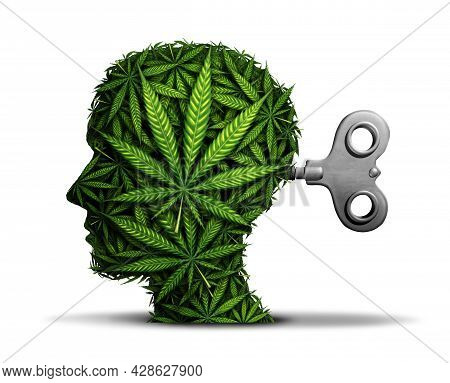 Marijuana Business And Cannabis Industry Or Mental Function With The Use Of Pot As A Psychiatric Con