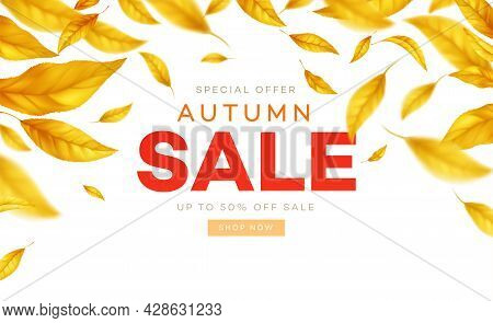 Background For The Autumn Season Of Discounts. Fall Sale Background With Flying Yellow And Orange Au