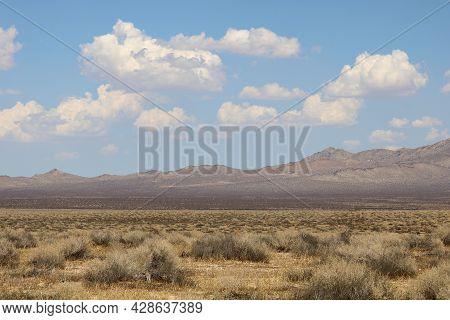 Sage Plants On Arid Badlands Taken At The High Desert Plateau In The Rural Mojave Desert, Ca