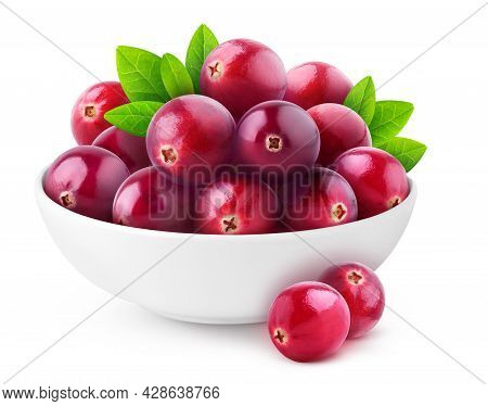 Isolated Cranberries. White Bowl With Heap Of Fresh Cranberry Fruits Isolated On White Background Wi