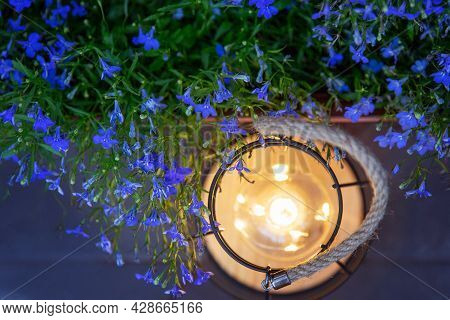 A Decorative Luminous Lamp Illuminates The Blue Flowers In The Garden With A Dim Light At Night. The