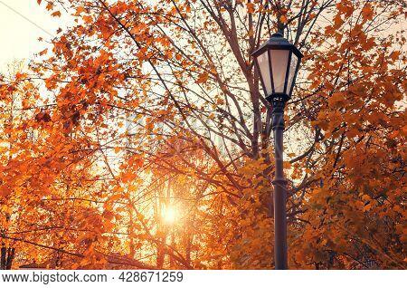 Autumn landscape. Lantern in the autumn city park, lantern against autumn trees at sunset, autumn park at sunset, autumn city park, autumn landscape, autumn park trees, autumn sunset city view