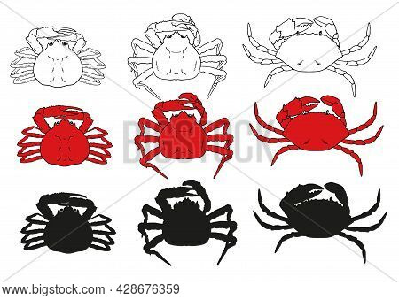 Vector Set Of Red Crabs. A Collection Of Elements Of Sea Food Crabs, Of Different Types And Shapes,