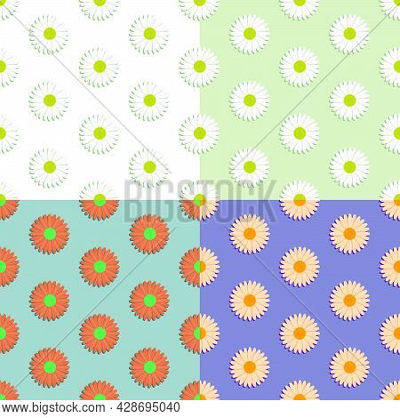 Set Of Seamless Patterns With Chamomile Flower. Summer Flower. Ornament For Decoration And Printing