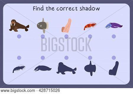 Matching Children Educational Game With Sea Animals - Walrus, Sunfish, Sponge, Shrimp, Cuttlefish. F