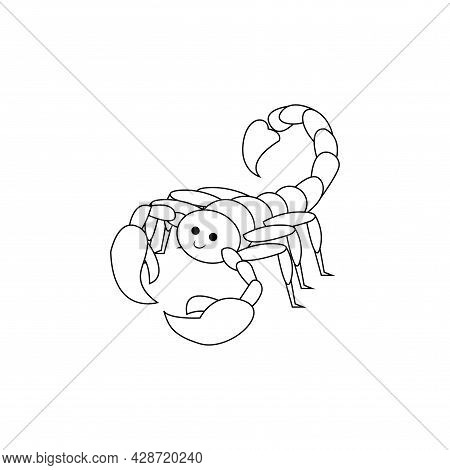 Isolated Scorpio Animal Character Zodiac Sign Vector