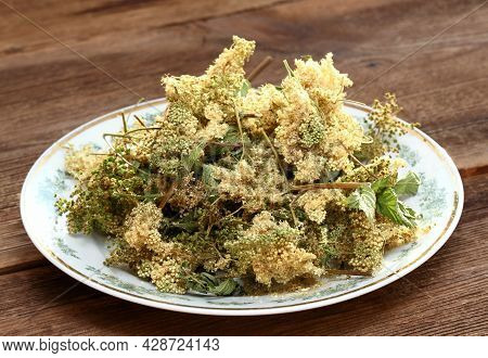 Dried Filipendula Ulmaria,  Commonly Known As Meadowsweet Or Mead Wort. It Is A Perennial Herbaceous