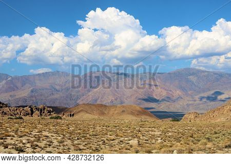 Sage Plants On Arid Badlands With The Rugged Sierra Nevada Mountains Beyond Taken At The Alabama Hil