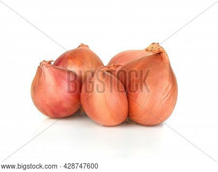 A Shallot ,onion Isolated On White Background