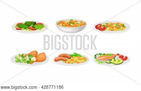 Pasta Mixed With Salmon Slabs And Herbs And Vegetable With Chicken Rested On Plate Vector Set