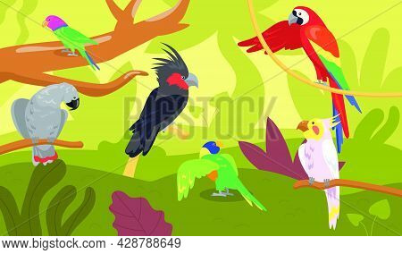 Different Kinds Of Parrots In Forest Or Jungle. Wild Tropical Birds, Exotic Multicolored Ara, Macaw