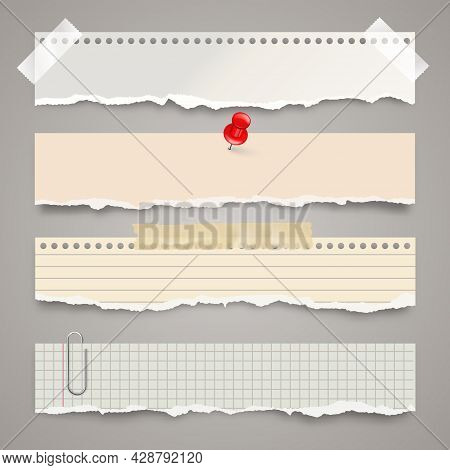Ripped Paper Strips With Adhesive Tape. Realistic Crumpled Paper Scraps With Torn Edges. Lined Shred