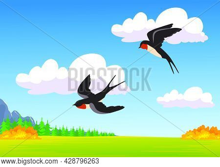 Two Cartoon Swallows Flying Over Autumn Field. Flat Vector Illustration. Colorful Natural Landscape