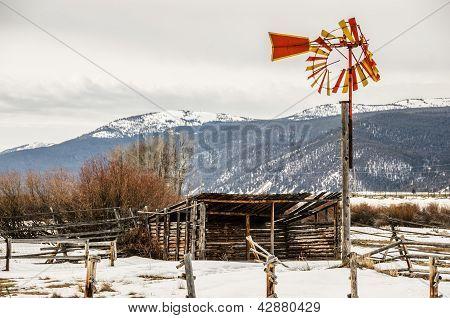 Orange And Yellow Windmill